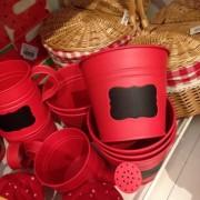 Vasos e regadores para festa piquenique