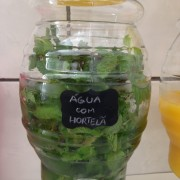 Água com hortelã: sucesso!