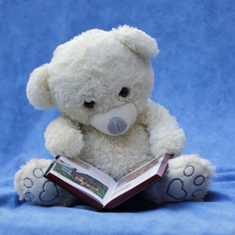 como escolher o livro ideal para bebês